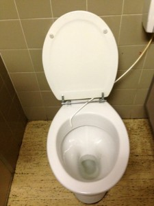 Toilet without seat